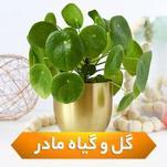 گل و گیاه مادر