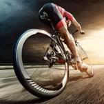 دوچرخه فروشی صادقی