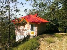 مشاور املاک و امور خدمات ملکی پروانه سند در شیپور-عکس کوچک