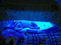 اجاره دستگاه فتوتراپی جهت درمان زردی نوزادان در شیپور-عکس کوچک