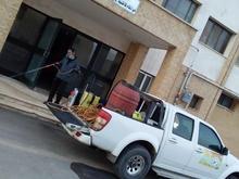 خدمات سمپاشی و مبارزه تخصصی با حشرات و موش ها در شیپور-عکس کوچک