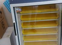 فروشگاه دستگاه جوجه کشی تمام اتومات در شیپور-عکس کوچک