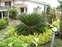 انجام امور باغچه وباغبانی از صفر تا صد در شیپور-عکس کوچک