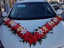 اجاره ماشین عروس وS5 و ۲۰۶ در شیپور-عکس کوچک