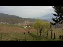 زمین مسکونی برای ویلا سازی  فوری200 متر  در شیپور-عکس کوچک