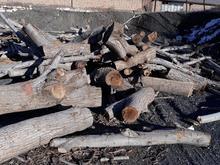 فروش فوری چوب گردو در شیپور-عکس کوچک