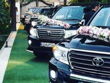 گل فروشی هلما تخفیف ویژه تاج گل واجاره ماشین  وکلی در شیپور-عکس کوچک