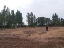 زمینی به متراژ500متر کشاورزی زمین های اکبری  در شیپور-عکس کوچک
