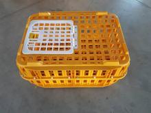 قفس حمل مرغ زنده،قفس حمل بلدرچین زنده  در شیپور-عکس کوچک