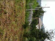 زمین مسکونی برجاده روبروی کارخانه چای دامنه لیسرود در شیپور-عکس کوچک