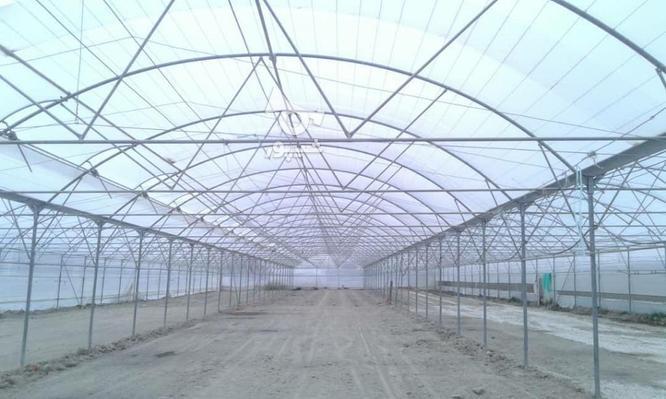 ساخت وساز وفروش تجهیزات گلخانه  در گروه خرید و فروش خدمات و کسب و کار در اصفهان در شیپور-عکس4