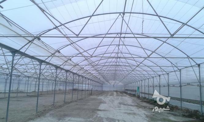 ساخت وساز وفروش تجهیزات گلخانه  در گروه خرید و فروش خدمات و کسب و کار در اصفهان در شیپور-عکس3