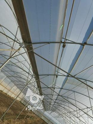 ساخت وساز وفروش تجهیزات گلخانه  در گروه خرید و فروش خدمات و کسب و کار در اصفهان در شیپور-عکس1
