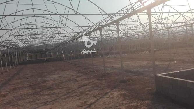 ساخت وساز وفروش تجهیزات گلخانه  در گروه خرید و فروش خدمات و کسب و کار در اصفهان در شیپور-عکس7