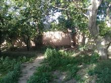 765 متر باغچه رویایی در شیپور-عکس کوچک