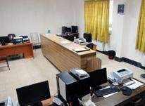 خانم جویای کار دفتری و اداری  در شیپور-عکس کوچک