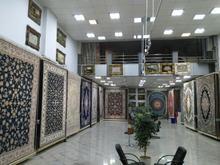 خرید مستقیم از کارخانه فرش کاشان در شیپور-عکس کوچک