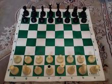 شطرنج سالم در شیپور-عکس کوچک