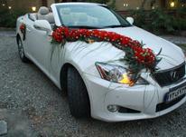 کرایه ماشین عروس بنز-  لکسوس- بی ام و- هیوندا  در شیپور-عکس کوچک
