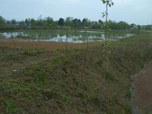 زمین مناسب احداث استخرماهی در شیپور-عکس کوچک