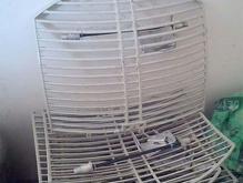 آنتن پارابولیک 30 دی بی و آنتن توری،parabolic در شیپور-عکس کوچک