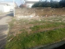 زمین 70متری حیدر کلا در شیپور-عکس کوچک