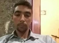 جویای کارم در شیپور-عکس کوچک