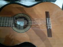 آموزش گیتار توسط خانم در شیپور-عکس کوچک