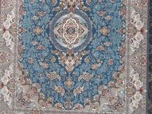کد:1369  فرش6متری  1200شانه  تراکم3600 در شیپور-عکس کوچک