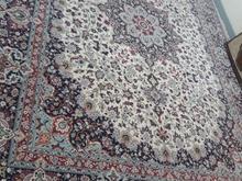 فرش12متری... در شیپور-عکس کوچک