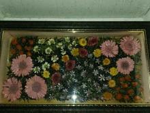 آکواریوم گل خشک  در شیپور-عکس کوچک