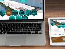 طراحی وب سایت شرکتی و شخصی توسط طراح باتجربه در شیپور-عکس کوچک