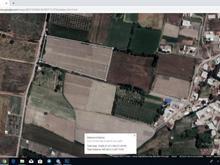 زمین کشاورزی 15200متر جاده کلانتری در شیپور-عکس کوچک