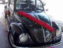 فولکس بیتل قورباغه ای  در شیپور-عکس کوچک