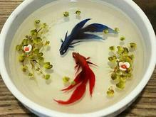 آموزش و سفارش ماهی سه بعدی در شیپور-عکس کوچک