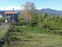 زمین واجارگاه گیلان مسکونی ۲۵۷ متر در شیپور-عکس کوچک