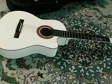 گیتار سفید در شیپور-عکس کوچک
