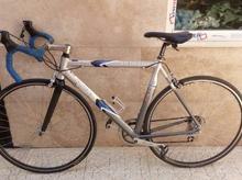 دوچرخه حرفه ای کورسی در شیپور-عکس کوچک