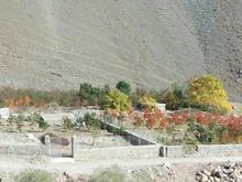 باغ با مناظر زیبا در دهتنگه در شیپور-عکس کوچک
