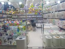 فروشندگی سیسمونی سلین در شیپور-عکس کوچک