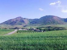 اجاره زمین کشاورزی13000000متر  در شیپور-عکس کوچک
