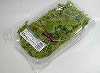 کارگاه بسته بندی انواع سبزیجات وحبوبات ومیوه جات در شیپور-عکس کوچک