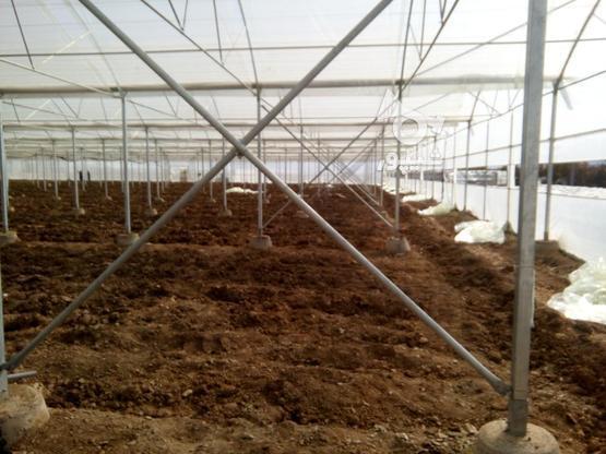 ساخت وسازوفروش واجراگلخانه  در گروه خرید و فروش خدمات و کسب و کار در اصفهان در شیپور-عکس5