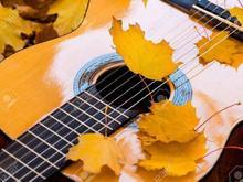 فشرده ترین اموزش گیتار و اواز در شیپور-عکس کوچک