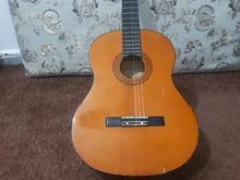 گیتار مارک colorado در شیپور-عکس کوچک