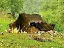 خریدارسیاه چادر  در شیپور-عکس کوچک