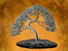 درخت بونسای سیمی در شیپور-عکس کوچک