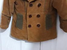 تک کت مخمل فروشی بدلیل کوچک شدن سایز  در شیپور-عکس کوچک
