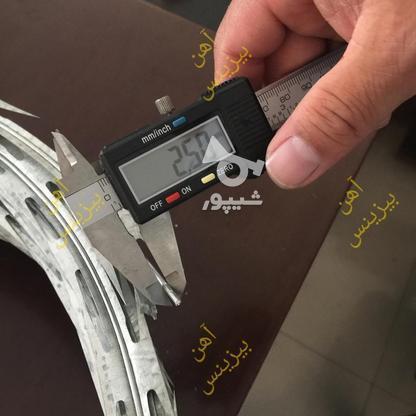 تولید سیم خاردار حلقوی ؛ سیم خاردار خطی گالوانیزه در گروه خرید و فروش خدمات و کسب و کار در تهران در شیپور-عکس7