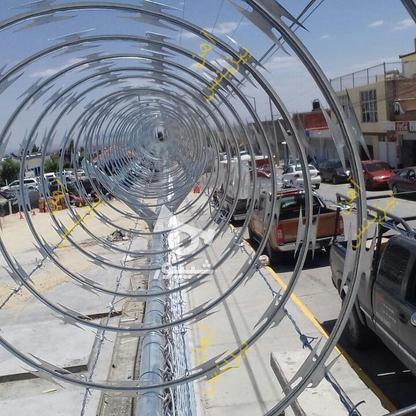 تولید سیم خاردار حلقوی ؛ سیم خاردار خطی گالوانیزه در گروه خرید و فروش خدمات و کسب و کار در تهران در شیپور-عکس1